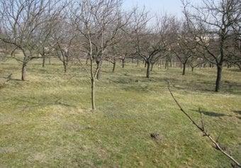 Prodej pozemku v lokalitě Újezd u Brna, okres Brno-venkov - obrázek č. 1
