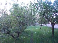 Prodej pozemku v lokalitě Modřice, okres Brno-venkov - obrázek č. 4