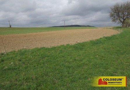 Prodej pozemku v lokalitě Třebařov, okres Svitavy - obrázek č. 1