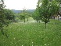 Prodej pozemku v lokalitě Žernovník, okres Blansko - obrázek č. 7