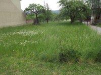 Prodej pozemku v lokalitě Žernovník, okres Blansko - obrázek č. 3