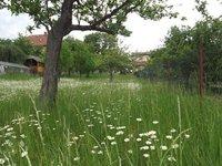 Prodej pozemku v lokalitě Žernovník, okres Blansko - obrázek č. 5