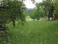Prodej pozemku v lokalitě Žernovník, okres Blansko - obrázek č. 8