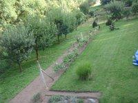 Prodej pozemku v lokalitě Moravský Krumlov, okres Znojmo - obrázek č. 4