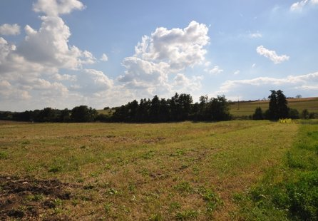 Prodej pozemku v lokalitě Rousínov, okres Vyškov - obrázek č. 1