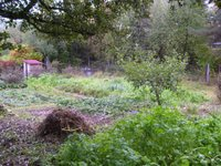 Prodej pozemku v lokalitě Rájec-Jestřebí, okres Blansko - obrázek č. 3