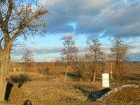 Prodej pozemku v lokalitě Malešovice, okres Brno-venkov - obrázek č. 3