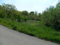 Prodej pozemku v lokalitě Džbánice, okres Znojmo - obrázek č. 2