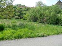 Prodej pozemku v lokalitě Džbánice, okres Znojmo - obrázek č. 5