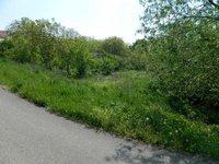 Prodej pozemku v lokalitě Džbánice, okres Znojmo - obrázek č. 3