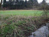 Prodej pozemku v lokalitě Letovice, okres Blansko - obrázek č. 3