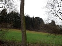 Prodej pozemku v lokalitě Letovice, okres Blansko - obrázek č. 5