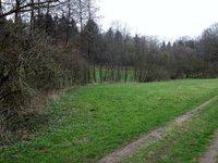 Prodej pozemku v lokalitě Letovice, okres Blansko - obrázek č. 4