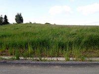 Prodej pozemku v lokalitě Bukovina, okres Blansko - obrázek č. 4