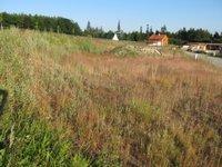 Prodej pozemku v lokalitě Bukovice, okres Brno-venkov - obrázek č. 2