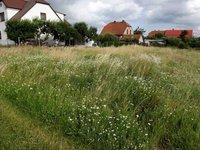 Prodej pozemku v lokalitě Ostrov u Macochy, okres Blansko - obrázek č. 7