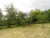 Prodej pozemku v lokalitě Křetín, okres Blansko - obrázek č. 3
