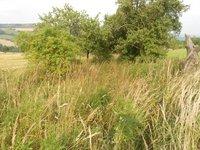 Prodej pozemku v lokalitě Křetín, okres Blansko - obrázek č. 2