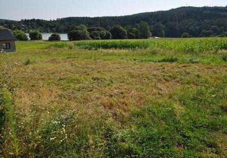 Prodej pozemku v lokalitě Račice-Pístovice, okres Vyškov - obrázek č. 1