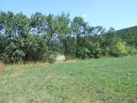 Prodej pozemku v lokalitě Javůrek, okres Brno-venkov - obrázek č. 3