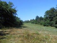 Prodej pozemku v lokalitě Javůrek, okres Brno-venkov - obrázek č. 2