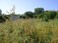 Prodej pozemku v lokalitě Vyškov, okres Vyškov - obrázek č. 4
