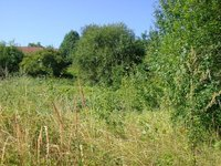 Prodej pozemku v lokalitě Vyškov, okres Vyškov - obrázek č. 3