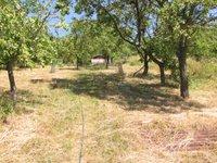 Prodej pozemku v lokalitě Dolní Kounice, okres Brno-venkov - obrázek č. 7