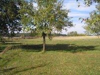 Prodej pozemku v lokalitě Bystřice nad Pernštejnem, okres Žďár nad Sázavou - obrázek č. 2