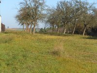 Prodej pozemku v lokalitě Vysoké Popovice, okres Brno-venkov - obrázek č. 3