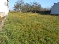 Prodej pozemku v lokalitě Vysoké Popovice, okres Brno-venkov - obrázek č. 2
