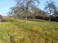 Prodej pozemku v lokalitě Vysoké Popovice, okres Brno-venkov - obrázek č. 5