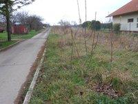 Prodej pozemku v lokalitě Syrovice, okres Brno-venkov - obrázek č. 5