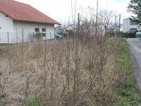 Prodej pozemku v lokalitě Syrovice, okres Brno-venkov - obrázek č. 6