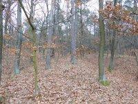 Prodej pozemku v lokalitě Lelekovice, okres Brno-venkov - obrázek č. 5