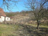 Prodej pozemku v lokalitě Hustopeče, okres Břeclav - obrázek č. 7