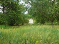 Prodej pozemku v lokalitě Hustopeče, okres Břeclav - obrázek č. 3