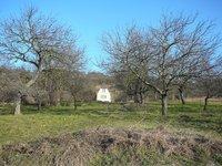 Prodej pozemku v lokalitě Hustopeče, okres Břeclav - obrázek č. 6