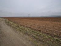 Prodej pozemku v lokalitě Bučovice, okres Vyškov - obrázek č. 2