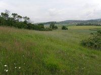 Prodej pozemku v lokalitě Kovalovice, okres Brno-venkov - obrázek č. 3