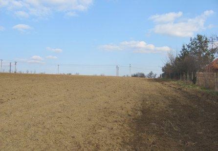 Prodej pozemku v lokalitě Kyjov, okres Hodonín - obrázek č. 1