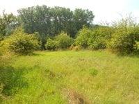 Prodej pozemku v lokalitě Černá Hora, okres Blansko - obrázek č. 2