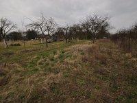 Prodej pozemku v lokalitě Bučovice, okres Vyškov - obrázek č. 4