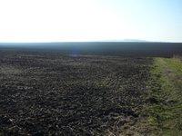 Prodej pozemku v lokalitě Ponětovice, okres Brno-venkov - obrázek č. 2