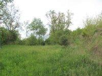 Prodej pozemku v lokalitě Dolní Kounice, okres Brno-venkov - obrázek č. 3