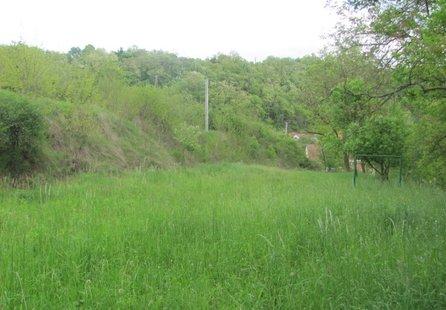 Prodej pozemku v lokalitě Dolní Kounice, okres Brno-venkov - obrázek č. 1