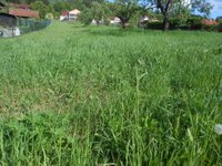 Prodej pozemku v lokalitě Železné, okres Brno-venkov - obrázek č. 2