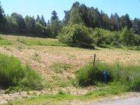 Prodej pozemku v lokalitě Jimramov, okres Žďár nad Sázavou - obrázek č. 3