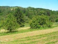 Prodej pozemku v lokalitě Jimramov, okres Žďár nad Sázavou - obrázek č. 2