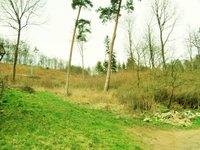 Prodej pozemku v lokalitě Řícmanice, okres Brno-venkov - obrázek č. 7